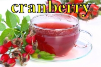 cranberry cranberries